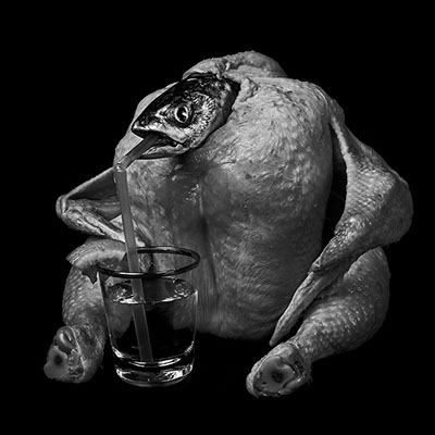 picture a chicken, a dead fish drinking with a straw a glass of alcool shot in studio Halet with a Mamiya medium format digital back Phase One