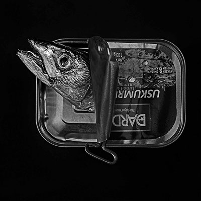 picture of a dead fish in a can shot in studio Halet with a Mamiya medium format digital back Phase One